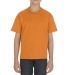 3381 ALSTYLE Youth Retail Short Sleeve Tee ORANGE